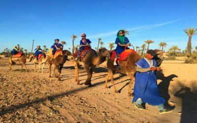 Camel Ride in Marrakech Palmeraie