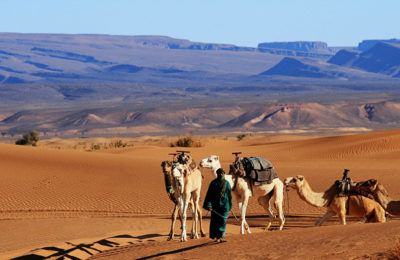 Zagoura desert tour From Marrakech