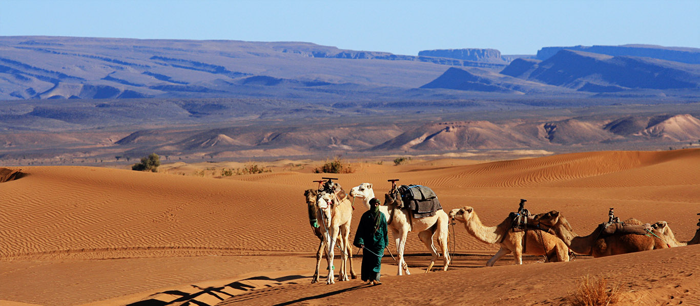 Zagoura desert tour From Marrakech 10-things-to-do-in-morocco