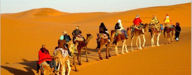 Morocco Desert Tour from Marrakech