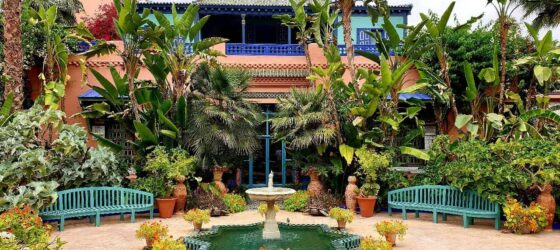 Top 5 Gardens in Marrakech