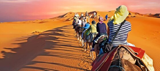 Best Road Trip Morocco