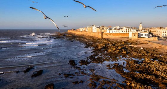 Essaouira From Marrakech